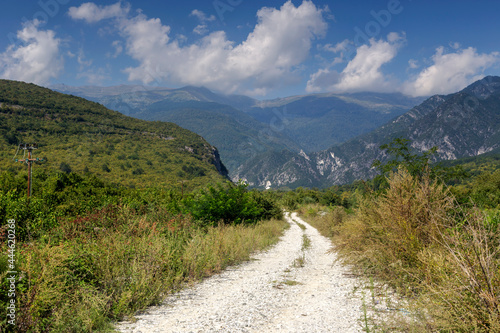 Walking path in the mountains forest (Central Macedonia, Greece)