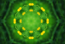 Green Kaleidoscope Pattern With Polygonal Shapes  And Yellow Backlights