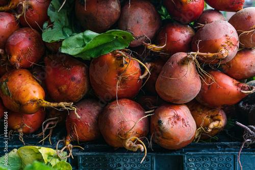 Fototapeta From the Farmers Market