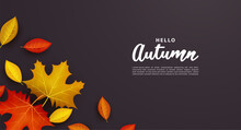 Autumn Background With Falling Leaves.
