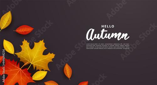 Obraz na plátne Autumn background with falling leaves.