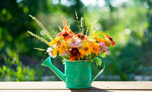 Colorful Summer Bouquet Of Garden And Wild Flowers In A Decorative Watering Can On A Natural Background