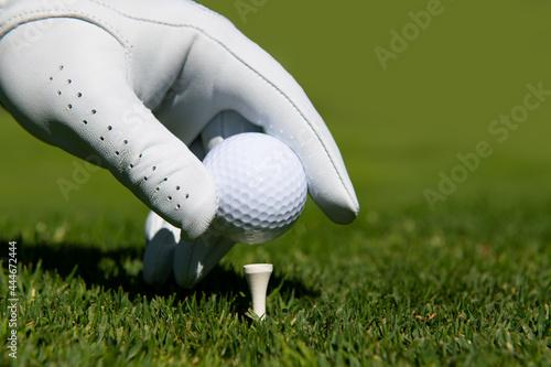Hand putting golf ball on tee in golf course. Golf ball in grass. Fototapet