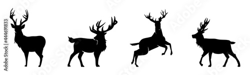 Foto deer silhouette collection