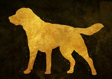 Labrador Dog Animal Golden Art Print, Watercolor, Abstract Painting. Watercolor Poster Illustration Gold, Texture, Decoration Wall Art.