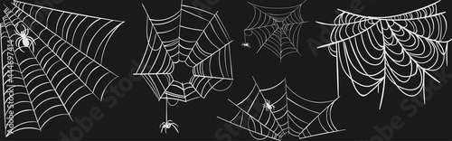 Fotografiet spider web vector collection