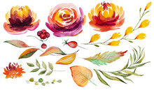 Autumn Watercolor Collection With Orange And Red Leaves And Flowers