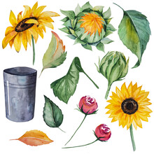 Autumn Watercolor Collection With Yellow Sunflowers