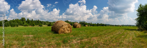 Fototapeta Sunny summer panorama with a field and haystacks