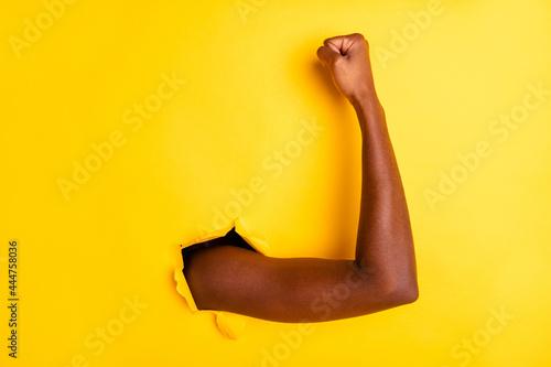 Canvas Photo of confident self-assured lady arm showing fresh biceps break through brig