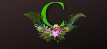 ACM- Green Alphabet