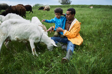 Father And His Curly Son Having Playtime With Herd Of The Goats