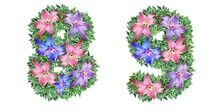 The Numbers 8, 9 Are Made Of Clematis Colors