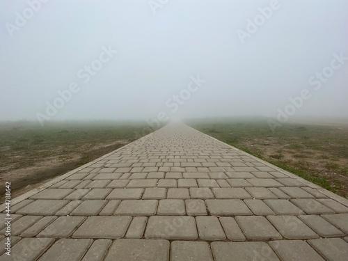 Fotografiet road in the fog