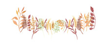 Watercolor Hand Painted Nature Autumn Plants Composition With Yellow Rye Ear, Brown Cereals, Green Sprouts And Orange Leaves On Branch Bouquet On The White Background For Card Design