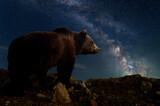 Fototapeta Kawa jest smaczna - Beautiful night landscape with bear and the Milky Way galaxy