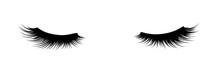 Eyelashes Of Closed Eyes. Fashion Illustration. False Lashes. Black And White Hand-drawn Image. Vector EPS 10.