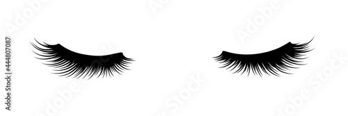 Fotografie, Obraz Eyelashes of closed eyes