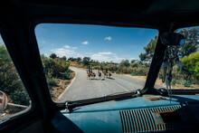 Van Stopped For Emus Crossing Sunny Road, Australia