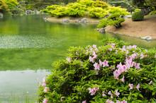 日本の香川県にある栗林公園の日本庭園