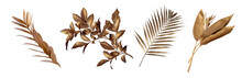 Tropical Leaves In Gold Color On White Space Background.Abstract Monstera Leaf Decoration Design.clipping Path