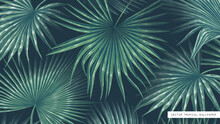 Realistic Vector And Volumetric Background With Hand-drawn Giant Palm Leaves. Tropical Wallpaper, Summer Theme For Desktop Of Computer, Tablet Or Phone Screens. Social Media Page Design, User Profile