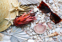 Sea Concept. Straw Hat And Sunglasses On Seashells Background