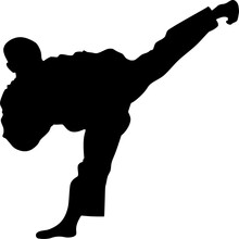Vector Silhouette Of Martial Art On White Background