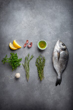 Knolling Composition On Gray Background - Fish Sea Bream, Herns, Garlic, Lemon