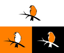 Orange Bird Logo Design
