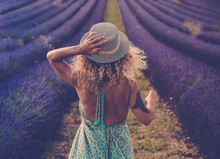Back View Of Pretty Babe In Boho Elegant Blue Dress Walk In Lavender Fields Wearing Travel Style Hat And Blonde Curly Nice Long Hair - Concept Or Free Woman In The Outdoor Nature Adventure Lifestyle