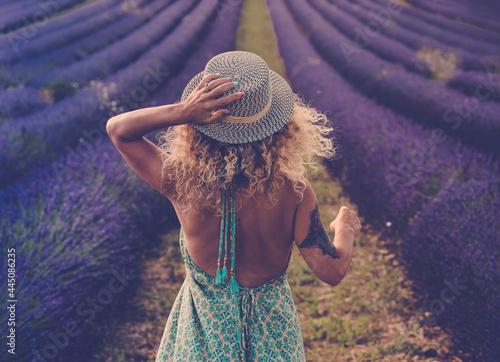 Fototapeta Back view of pretty babe in boho elegant blue dress walk in lavender fields wear
