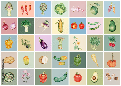 Hand drawn vegetables collection Fototapet