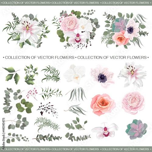 Vector floral compositions Fotobehang