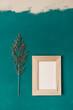 Ein leerer Holz Bilderrahmen und eine Pflanze auf einem grünen Hintergrund. Wand, Kunst.