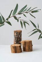 Empty Wooden Podiums And Eucalyptus Branch On Grey Background. Mockup For Spa Product Advertising. Natural Materials. Showcase For Cosmetic Display And Green Leaves. Still Life. Front View.