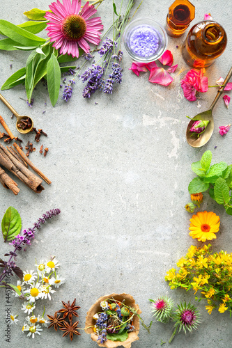 Obraz na plátně Herbal plants, ingredients and homemade natural cosmetics organic beauty product