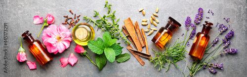 Fotografie, Obraz Bottles of essential oil with rosemary, thyme, cinnamon sticks, cardamom, mint,