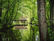 Örtzetal Mit Fluss Und Wald In Der Lüneburger Heide