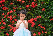 Adorable Little Girl Playing Against Blossom Red Chinese Ixora Background.
