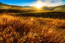 Grass, Hillside, Golden, Yellow, Sunset, Sunrise, Sunstar, Sunburst