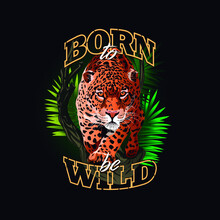 Image Of Jaguar In The Jungle. Fierce Staring Leopard. Born To Be Wild. Illustration Of Many Colors. Cheetah In The Jungle