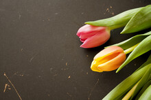 Floral Wallpaper With Vibrant Orange And Pink Tulips On A Black Surface With Copy Space