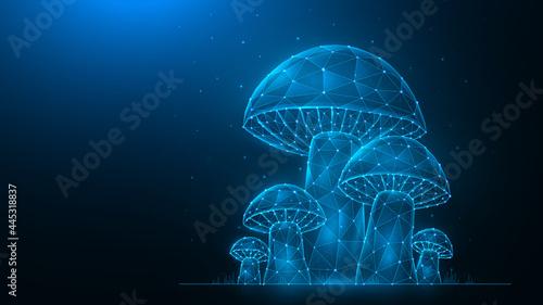 Fotografie, Obraz Polygonal vector illustration of Mushrooms on a dark blue background