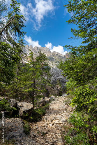 Felslabyrinth unter dem Latemar, Dolomiten, Südtirol