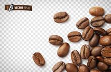 Grains De Café Vectoriels Sur Fond Transparent