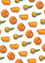 Pattern Of Various Pumpkins And Squashes Flat Laid Against White Background