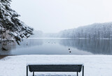 Empty bench on snow-covered shore of Adenauer Weiher