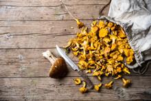 Single Porcini Mushroom, Kitchen Knife And Sack Of Chantarelles