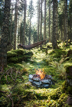 Stone Campfire Burning In Forest With Man Lying In Hammock In Background